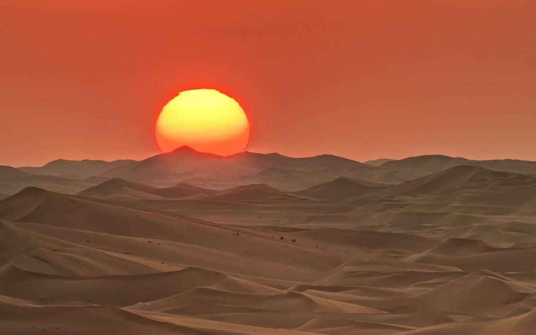 Caught in the desert of employment legislation, Horizon HR will lead you to safety
